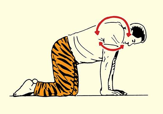 Vstávajte ako Zviera - Váš Ranný Strečingový Rituál, strečing, muž, rituál, cvičenie, oddych, www.pravymuz.sk, zdravie a šport, Strečing, Strečing ramenami