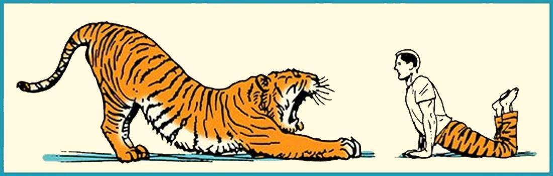 Vstávajte ako Zviera – Váš Ranný Strečingový Rituál