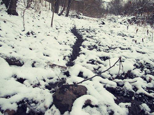 game-trail-snow-1