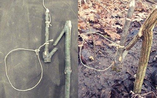 primitive-snare-combo
