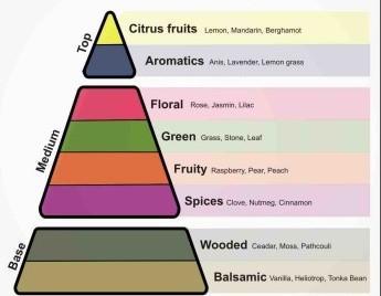 perfume-pyramid-3-e1444752040715