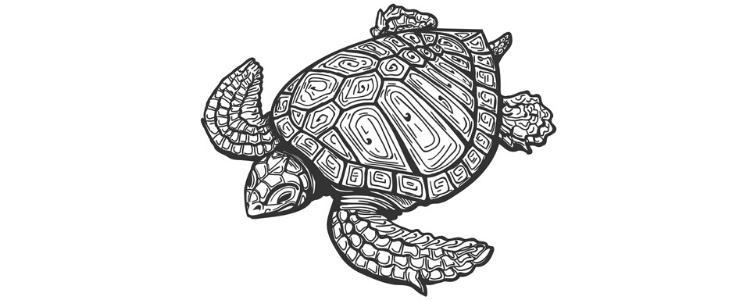 Námornícke Tetovanie korytnačka